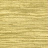 Winfield Thybony for Kravet: Sisal WSS4527.WT.0 Citrine