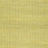 Winfield Thybony for Kravet: Metallic Sisal WSS4528.WT.0 Lemon Grass