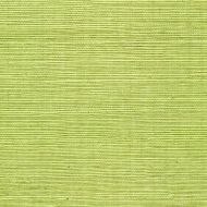 Winfield Thybony for Kravet: Sisal WSS4529.WT.0 Margarita