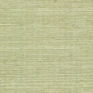 Winfield Thybony for Kravet: Sisal WSS4531.WT.0 Fern