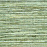 Winfield Thybony for Kravet: Sisal WSS4532.WT.0 Springtime