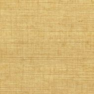 Winfield Thybony for Kravet: Sisal WSS4536.WT.0 Brush
