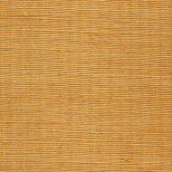 Winfield Thybony for Kravet: Metallic Sisal WSS4537.WT.0 Tuscan Sun