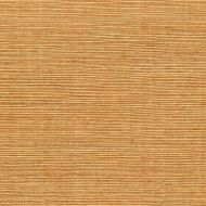 Winfield Thybony for Kravet: Sisal WSS4540.WT.0 Ecru