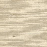 Winfield Thybony for Kravet: Sisal WSS4552.WT.0 Spearmint