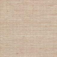 Winfield Thybony for Kravet: Sisal WSS4558.WT.0 Hazel