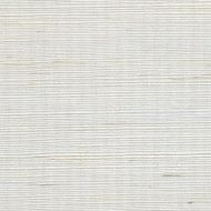 Winfield Thybony for Kravet: Metallic Sisal WSS4567.WT.0 Sand Dollar