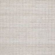 Winfield Thybony for Kravet: Metallic Sisal WSS4569.WT.0 Beige Breeze