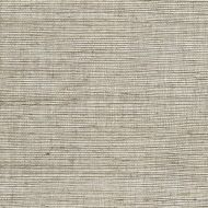 Winfield Thybony for Kravet: Metallic Sisal WSS4571.WT.0 Linen