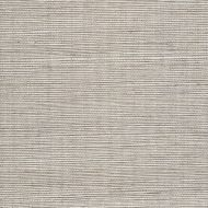 Winfield Thybony for Kravet: Metallic Sisal WSS4574.WT.0 Thunder