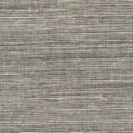 Winfield Thybony for Kravet: Metallic Sisal WSS4576.WT.0 Shadow