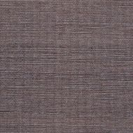 Winfield Thybony for Kravet: Sisal WSS4578.WT.0 Iron