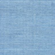 Winfield Thybony for Kravet: Sisal WSS4591.WT.0 Blue Mist