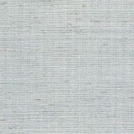 Winfield Thybony for Kravet: Metallic Sisal WSS4584.WT.0 Sky